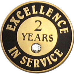2 YEARS OF SERVICE PIN W/ STONE