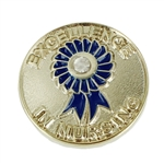 EXCELLENCE IN NURSING PIN