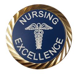NURSING EXCELLENCE PIN