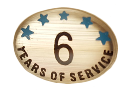 6 YEARS SELF ADHESIVE YEARS OF SERVICE