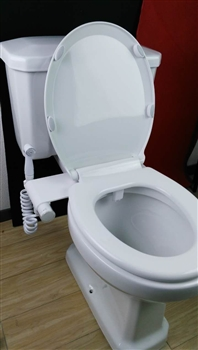 Renaissance Bidet 900 Combination Seat And Hand Bidet