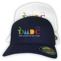 DEER MOUNTAIN DAY CAMP CAMP FLEX FIT CAP