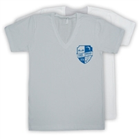 LAKE OWEGO AMERICAN APPAREL UNISEX JERSEY V-NECK TEE
