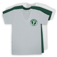PINEMERE AMERICAN APPAREL UNISEX JERSEY V-NECK TEE