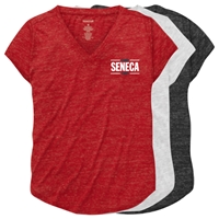 SENECA LAKE RELAXED HEATHER V-TEE