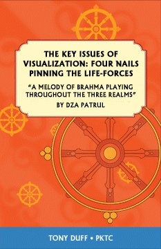 The Key Issues of Visualization: Four Nails Pinning the Life-Forces