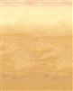 Roar Desert Sand Theme Backdrop.  Save 5%.