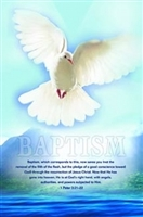 Pkg.100 Baptism Bulletins. Save 50%.