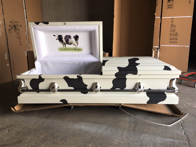 Custom cow Casket