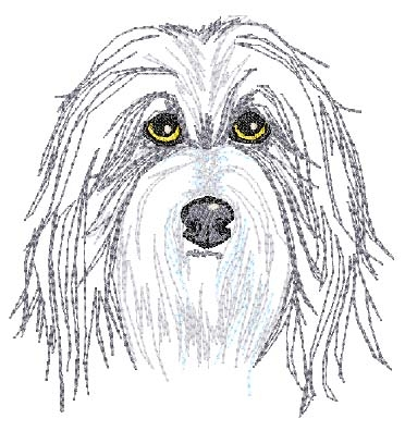 Bearded Collie  Head Panel Insert