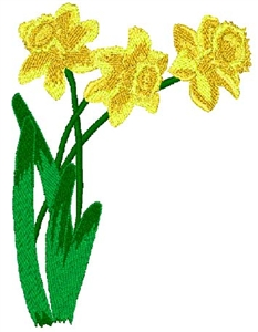 Daffodils Head Panel Insert