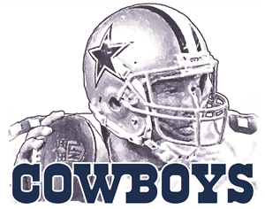 Football Dallas Cowboys Head Panel Insert 2