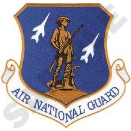U.S. Air National Guard Emblem Head Panel Insert
