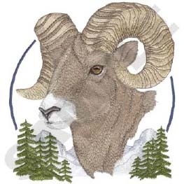 Bighorn Sheep Head Panel Insert
