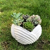 Rope Bowl To Go Pack $35