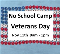 Veterans Day Camp Nov 11th