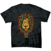 Santa Cruz Lion Rasta Regular S/S - Spider Black - Men's T-Shirt