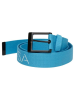 DC Rob Dyrdek Highlight - Neon Blue - Men's Belt