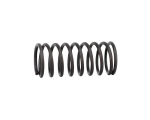 Empire BT Trracer Valve Spring (19273)