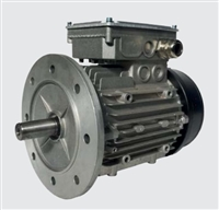 Metalrota: SYNCHRONOUS AC PMS MOTOR (Brushless-PMS-Motors)
