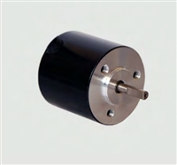 Transmotec Brushless DC Motors BR2826