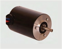 Transmotec Brushless DC Motors BR2838