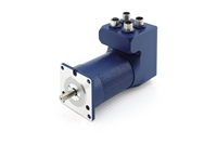 Nanotec: BRUSHLESS DC SERVO MOTOR WITH INTEGRATED CONTROLLER IN PROTECTION CLASS IP65 – NEMA 23
