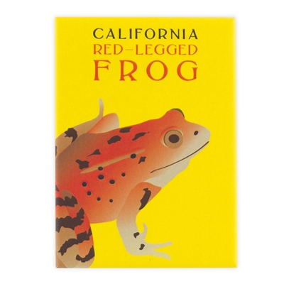Magnet - California Red-legged Frog