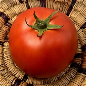 Abraham Lincoln heirloom tomato seeds