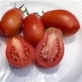 Aker's Plum Heirloom Tomato Seeds