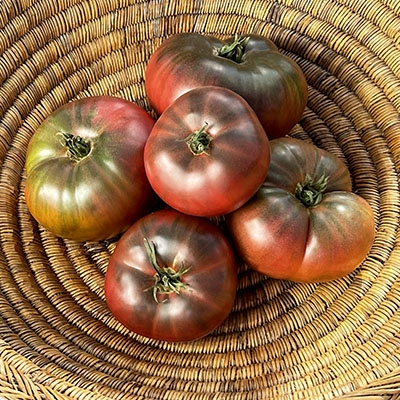 Grow 4 Types of Tomatoes from Seed - Indoor Germination Kit with 4 Packets of Non-GMO Organic Seeds - Sweet Red Tomato, Cherry Tomatoes, Yellow Pear Tomato, Green Zebra Tomato, Soil, Pots & .