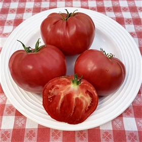 Buffalo Heart Giant - Tomato Seeds