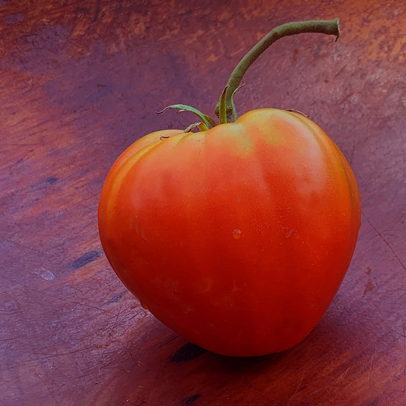 Grown in /'20 German Variety 20 Strawberry Organic Tomato Seeds-Large