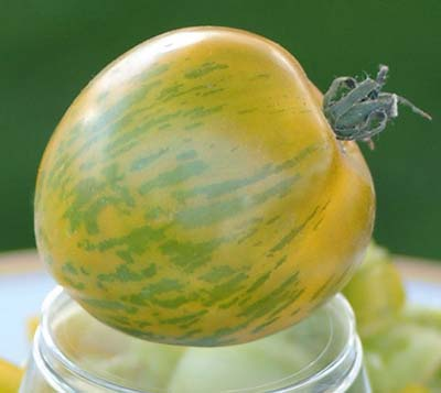 Green Zebra Organic Heirloom Tomato