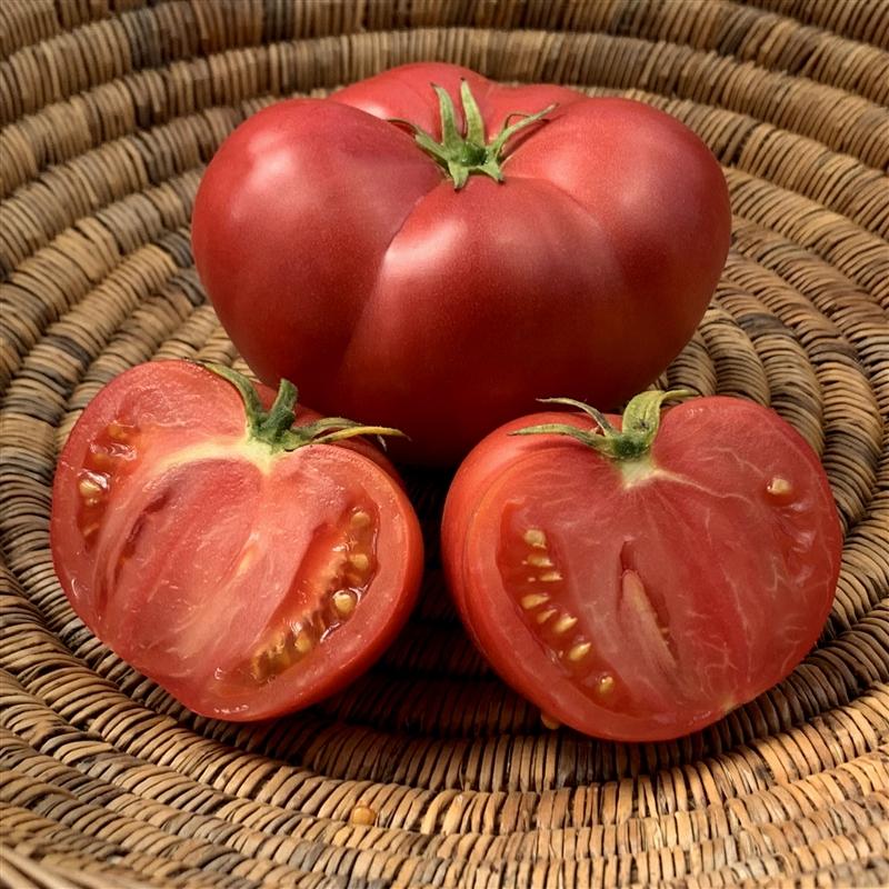 Hege German Pink - Organic Heirloom Tomato Seeds