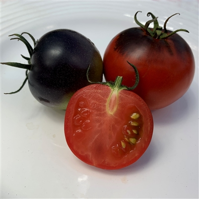 Pride of Flanders - Organic Heirloom Tomato Seeds