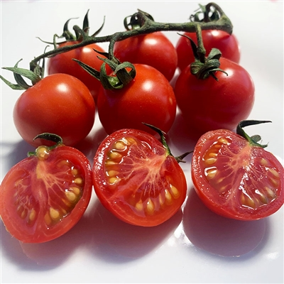 Tommy Toe Cherry Tomato