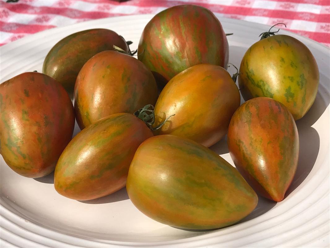 Wild Tiger - Organic Heirloom Tomato Seeds