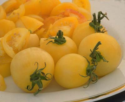 Yellow Perfection Heirloom Tomato
