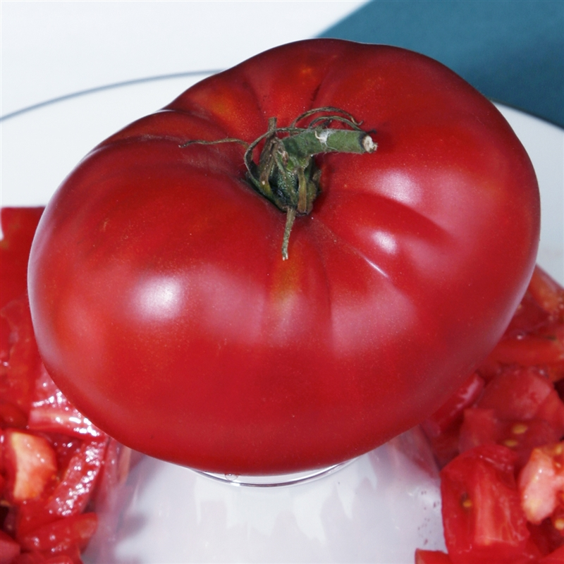 Brimmer Heirloom Tomato Seeds Organic