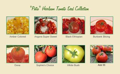 Patio Gardener Tomato Seed Collection