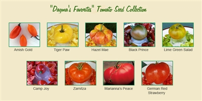 Dagma's Favorites -Tomato Seed Collection