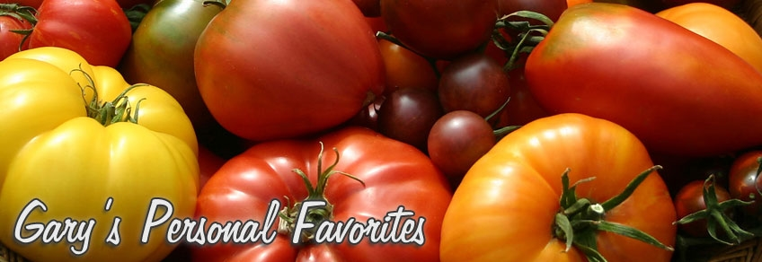 Tomato Seeds Heart Golden vegetable seeds from Ukraine