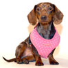 Dotty Pink Puppia Harness