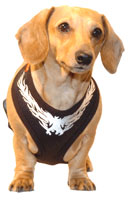 Flaming Phoenix Black Puppia Harness
