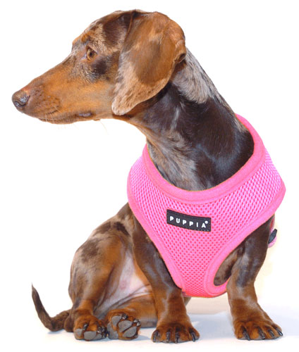 Pretty in Pink Puppia Harness