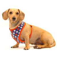 America Cushion-Fit Dachshund Harness