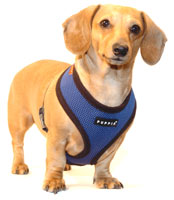 Navy Blue Puppia Harness