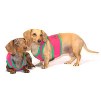 Watermelon Pink Classic Never-Choke Dachshund Harness
