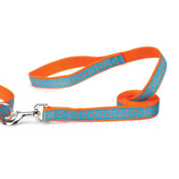 Dotty Orange & Turquoise Dachshund Leash